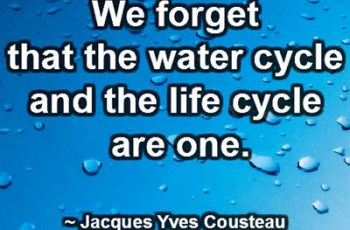 We forget that the water cycle and the life cycle are one. ~ Jacques Yves Cousteau