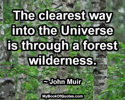 The clearest way into the Universe is through a forest wilderness. ~ John Muir
