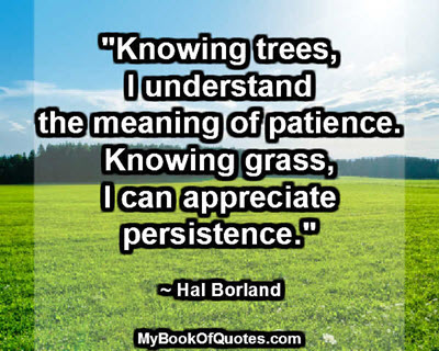 """""""Knowing trees, I understand the meaning of patience. Knowing grass, I can appreciate persistence."""" ~ Hal Borland"""