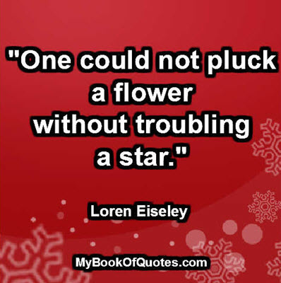 """One could not pluck a flower without troubling a star."" ~ Loren Eiseley"