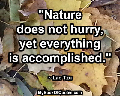 """""""Nature does not hurry, yet everything is accomplished.""""  ~ Lao Tzu"""