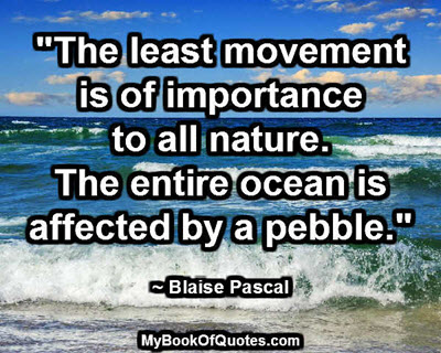 """""""The least movement is of importance to all nature. The entire ocean is affected by a pebble."""" ~ Blaise Pascal"""