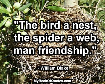 """""""The bird a nest, the spider a web, man friendship."""" ~ William Blake"""