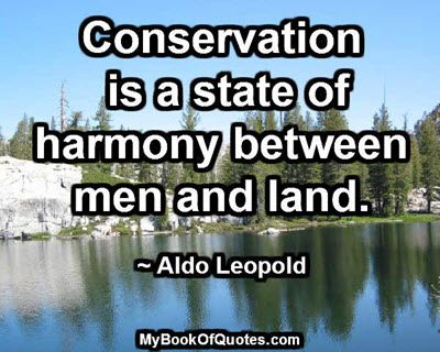 Conservation is a state of harmony