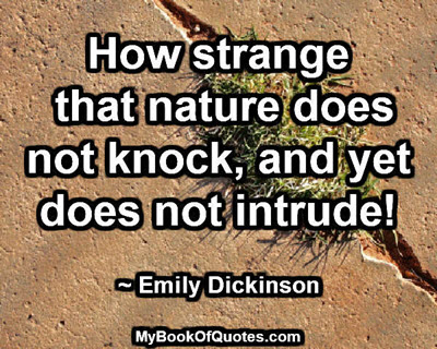 How strange that nature does not knock, and yet does not intrude! ~ Emily Dickinson
