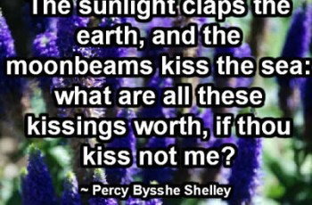 The sunlight claps the earth, and the moonbeams kiss the sea: what are all these kissings worth, if thou kiss not me?  ~ Percy Bysshe Shelley