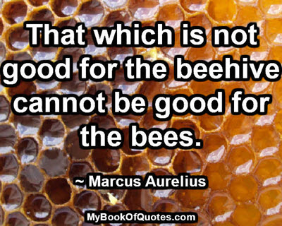 That which is not good for the beehive cannot be good for the bees. ~ Marcus Aurelius