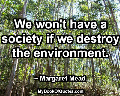 We won't have a society if we destroy the environment. ~ Margaret Mead