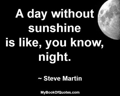 A day without sunshine is like, you know, night. ~ Steve Martin