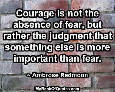 Courage is not the absence of fear, but rather the judgment that something else is more important than fear. ~ Ambrose Redmoon