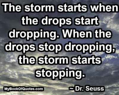 The storm starts when the drops start dropping. When the drops stop dropping, the storm starts stopping. ~ Dr. Seuss