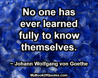 no_one_has_ever_learned