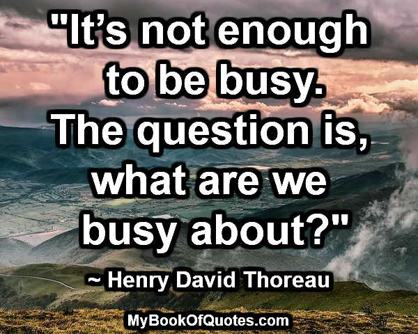 """""""It's not enough to be busy. The question is, what are we busy about?"""" ~ Henry David Thoreau"""