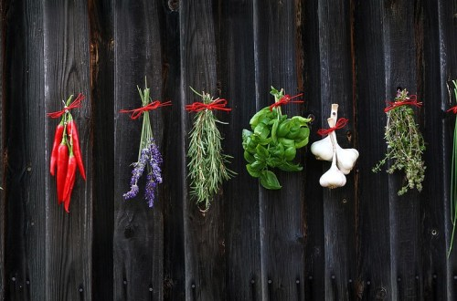 Herbs for cooking
