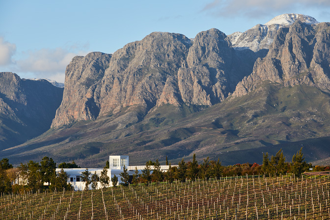 WINERY NEWS: Newborns Thrive in Nature at Vergelegen Wine Estate