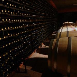 Chardonnay in wine barrels
