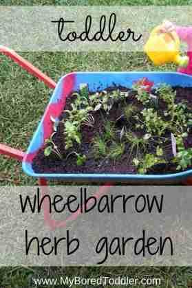 gardening with kids wheelbarrow herb garden