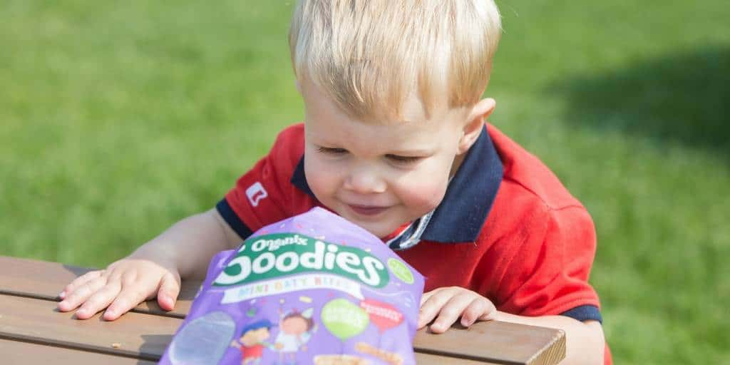 Healthy Toddler Snack Ideas for Travelling