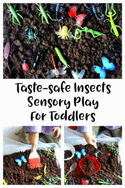 Insect sensory bin for toddlers taste safe. A fun sensory play activity great for toddlers and preschoolers. Sensory bins, sensory play, tuff tray play. Toddler Activities, toddler activity