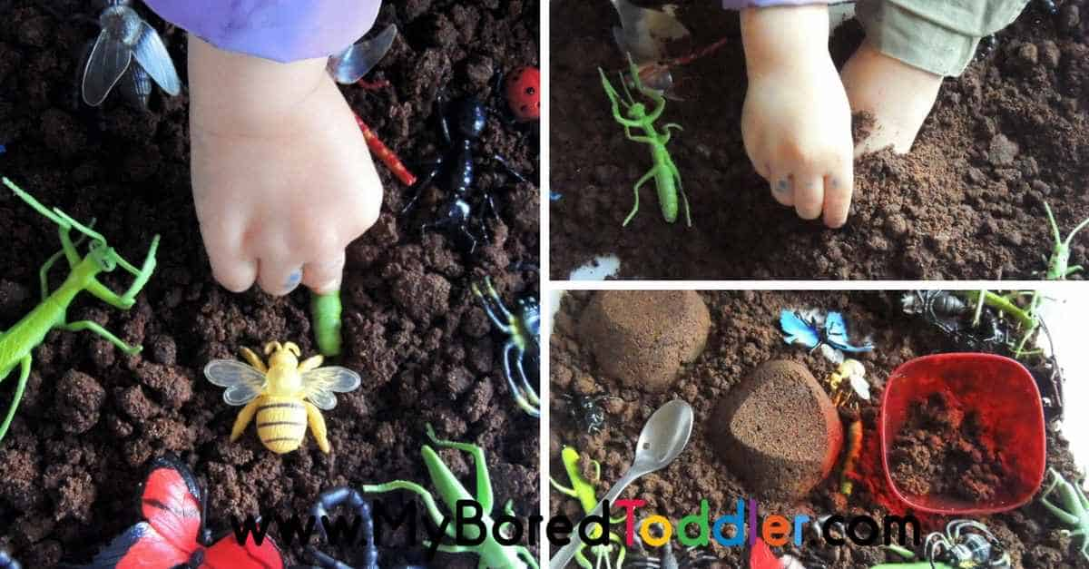 Insects Sensory Bin - Taste Safe - My Bored Toddler