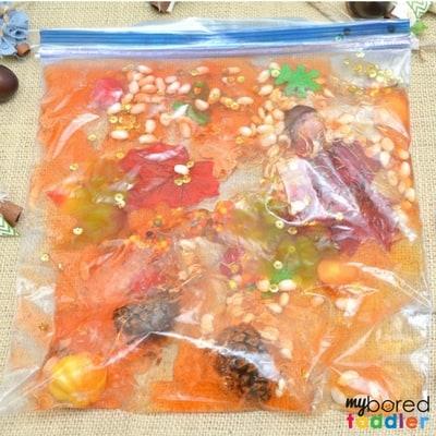 Toddler Fall Sensory Bag