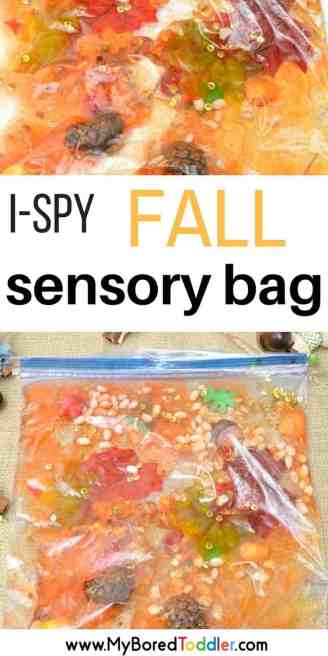 Toddler Fall Sensory Bag Autumn sensory play #sensorybag #sensoryplay #toddleractivity #toddleractivities