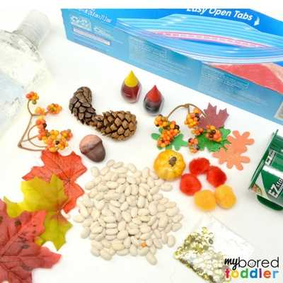Toddler Fall Sensory bag supplies