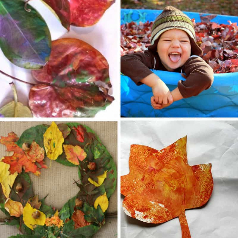 Leaf craft and activity ideas for toddlers