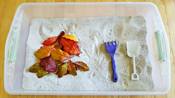 Autumn leaves in the sandbox