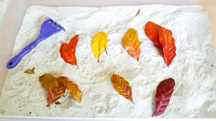 Count and sort leaves in the sandbox fall activity