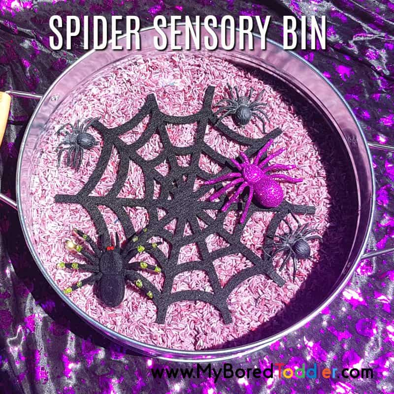 Halloween Spider Sensory Rice Bin