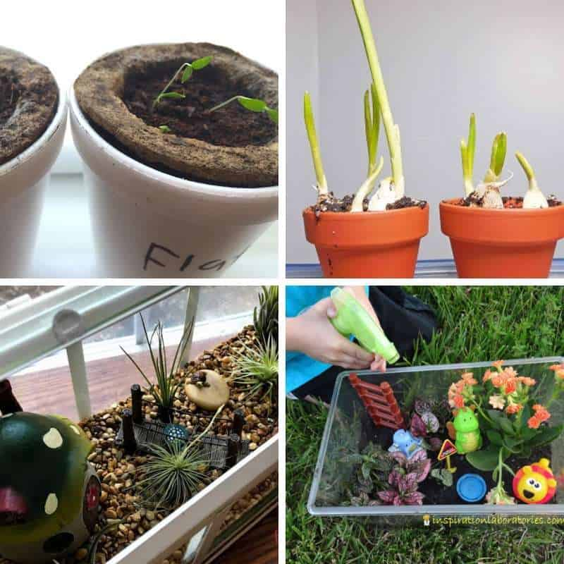 engaging activities for toddlers in the garden