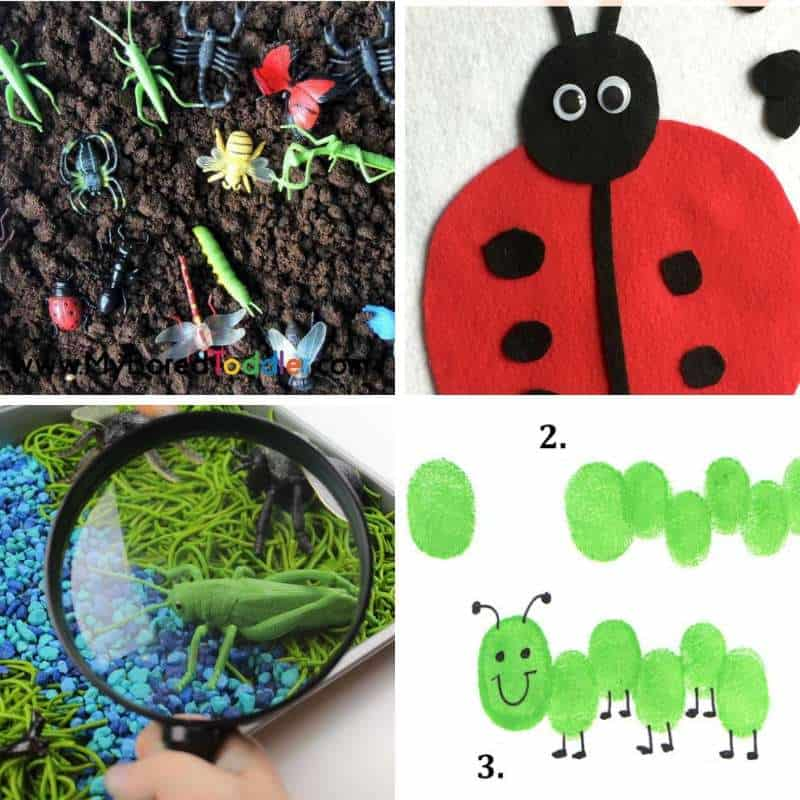 Insects And Bugs Activities For Toddlers My Bored Toddler