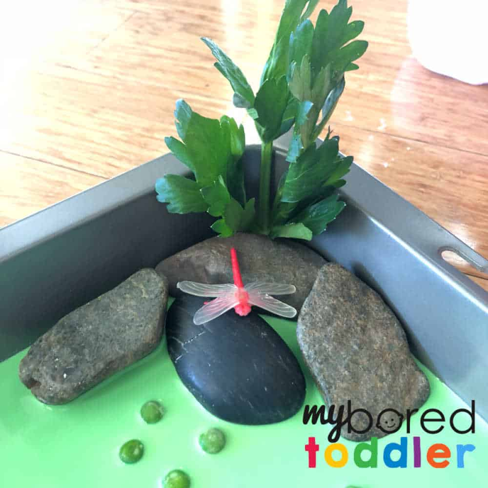 crocodile sensory bin for toddlers