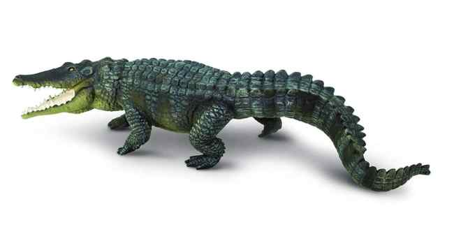 safari ltd crocodile