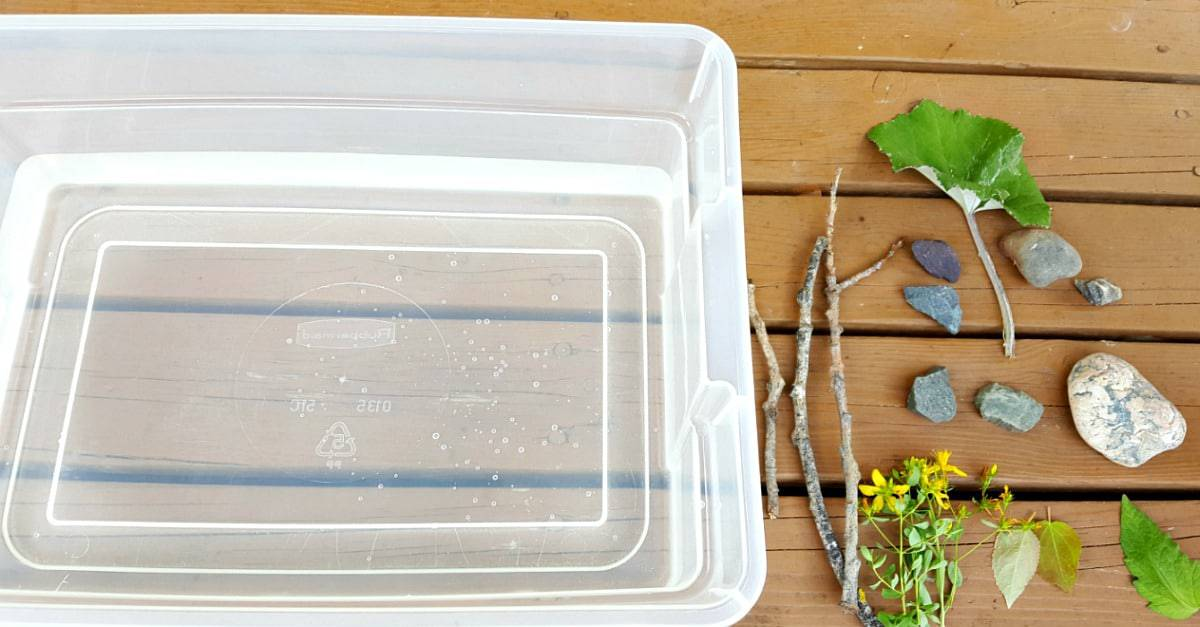 Sink and float sensory play with water and natural materials