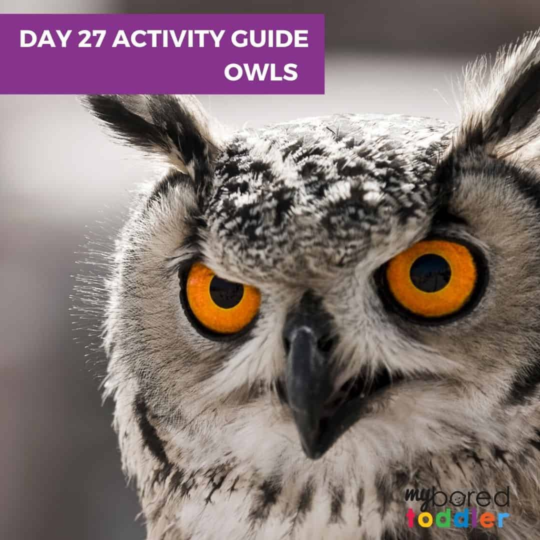 Day 27 Owls indoor toddler activities