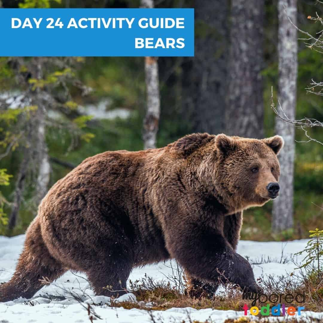 mY BORED TODDLER DAY 24 INDOOR ACTIVITY GUIDE BEARS