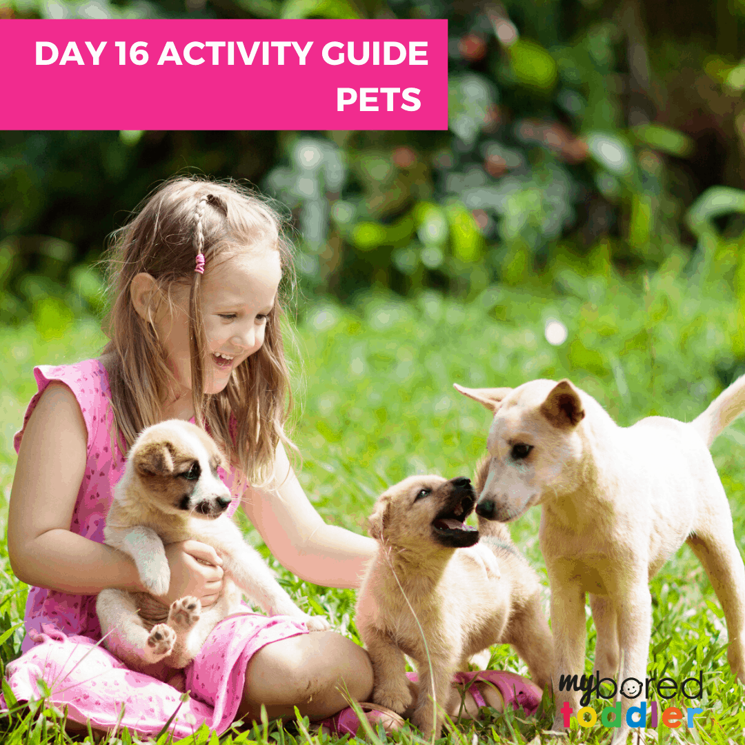 pets indoor activities for toddlers
