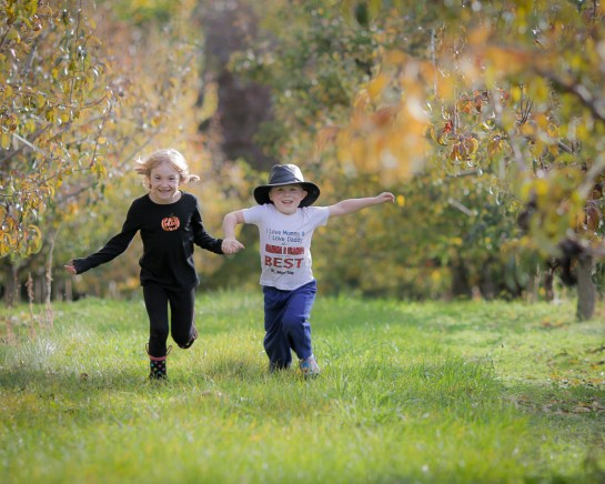2 kids running holding hands in apple orchard