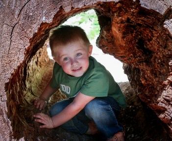 little kid in tree