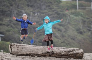 brother and sister jumping off log on beach