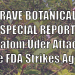 Brave Botanicals Special Report – Kratom Under Attack: the FDA Strikes Again