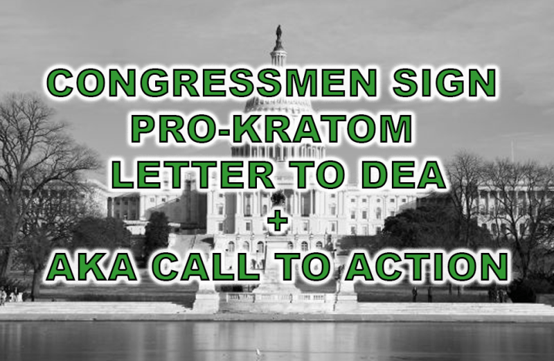 AKA Calls on Kratom Community to Encourage Representatives to Support Pocan/Lobiondo Letter