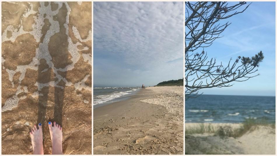 wakacje na Litwie - Polaga