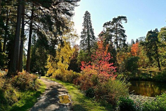 Jesień w UK