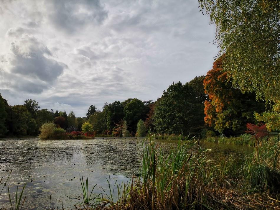 Kolory jesieni nad stawem w Glansevern Hall