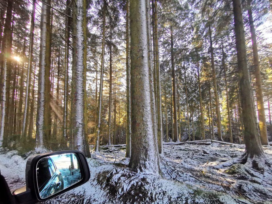 Po drodze zachwyca nas śnieżny las