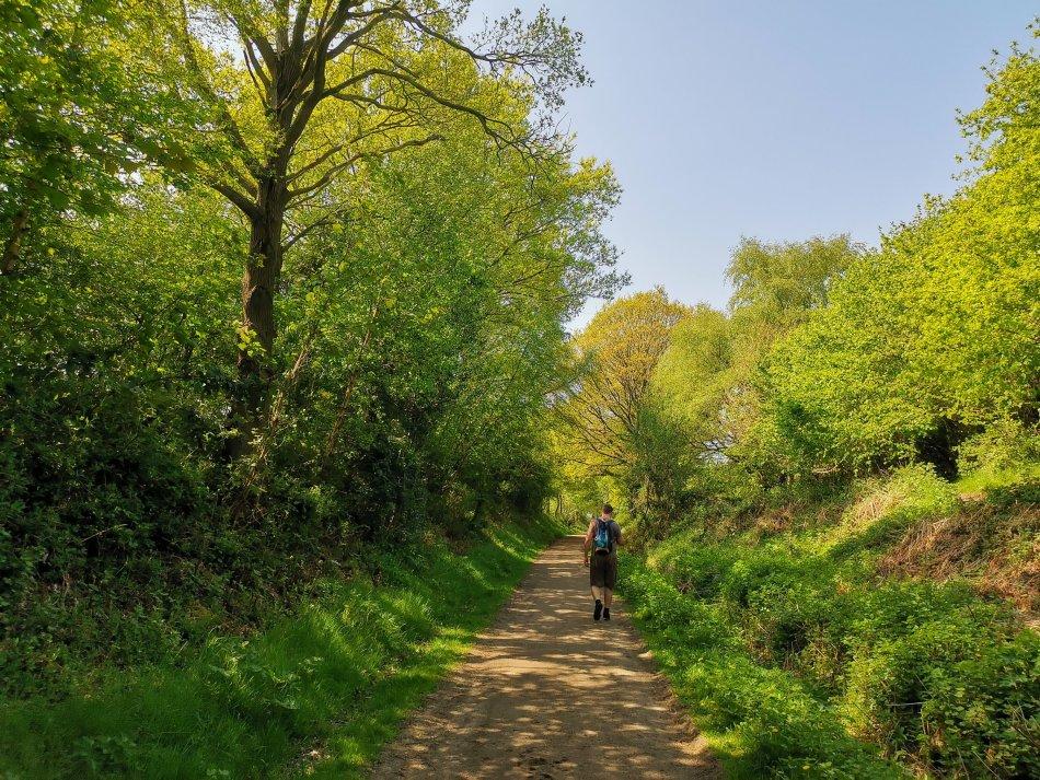 w czasach zarazy spacer po Cheshire