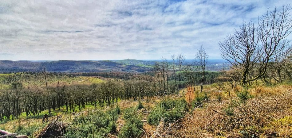 Macclesfield Forest i panorama